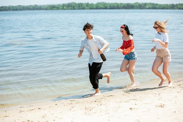 Grupa Przyjaciół świętuje Na Plaży Darmowe Zdjęcia