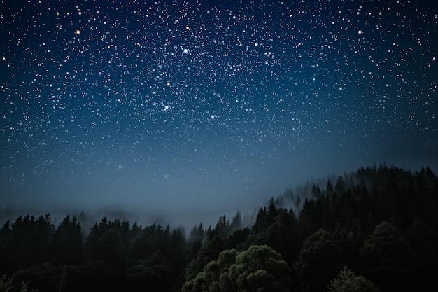 Gwiazda Wskazuje święta Jezusa Chrystusa. Premium Zdjęcia