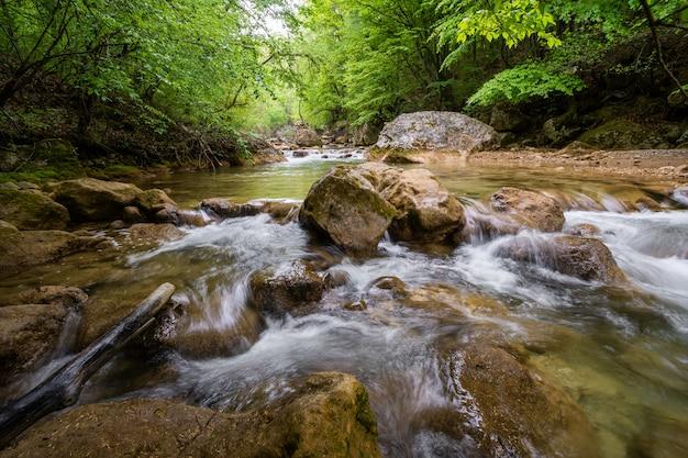 Halna Rzeka Płynie Przez Zielonego Lasu Premium Zdjęcia