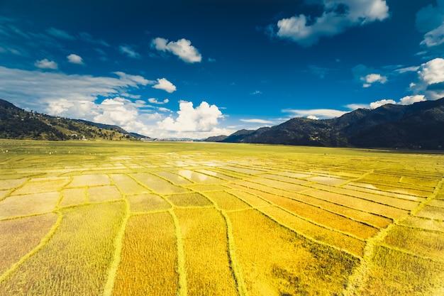 Himalajski Ryżu Pole, Nepal Premium Zdjęcia