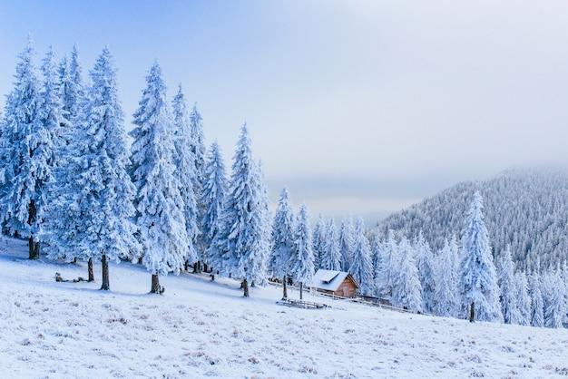 Idylliczny Domek W Zimie Premium Zdjęcia