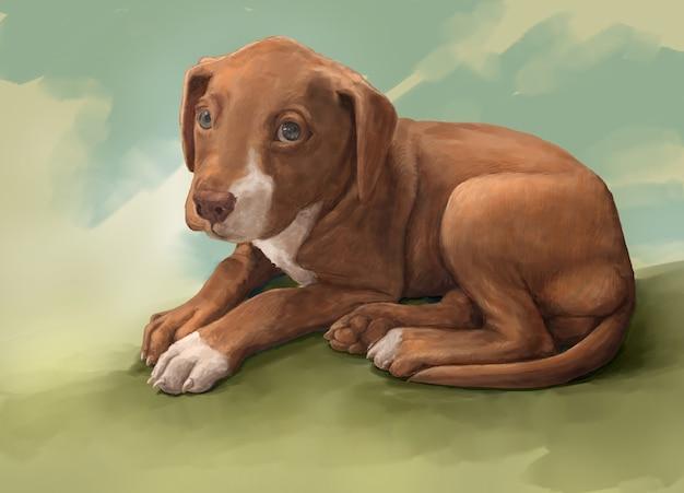 Ilustracja Malowanie Psa Premium Zdjęcia