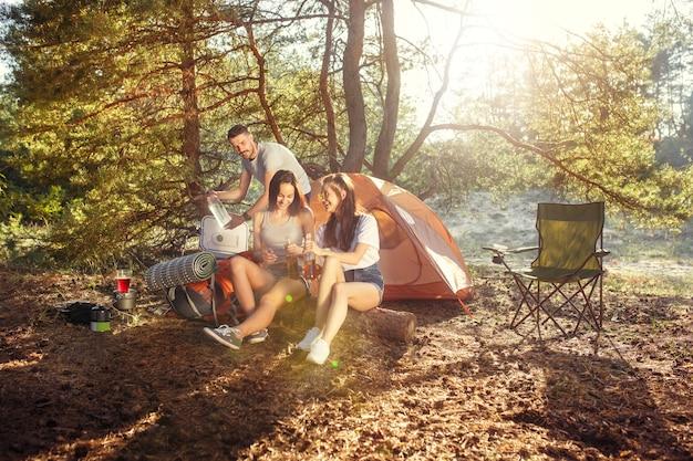 Impreza, Biwakowanie Grupy Mężczyzn I Kobiet W Lesie Darmowe Zdjęcia