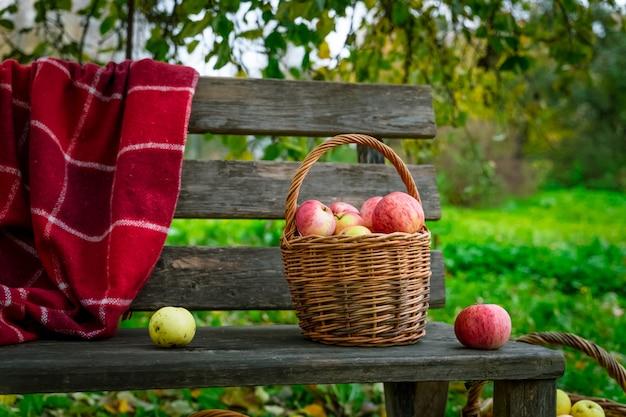 Jabłka zbierane w trzech koszach na drewnianej ławce Premium Zdjęcia