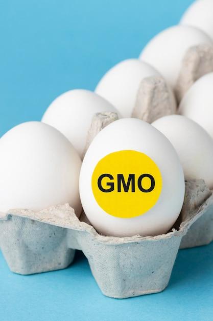 Jaja Gmo żywność Modyfikowana Chemicznie Darmowe Zdjęcia