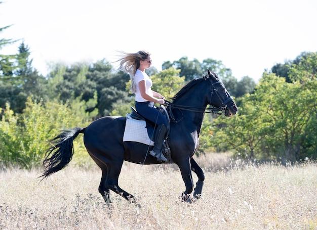 Jazda Konna Trenuje Swojego Czarnego Konia Premium Zdjęcia