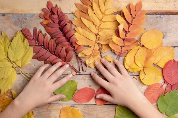 Jesień liście nad drewnianym. z copyspace Premium Zdjęcia
