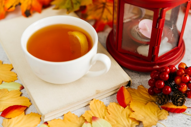 Jesień Skład Z Filiżanką Herbata Darmowe Zdjęcia
