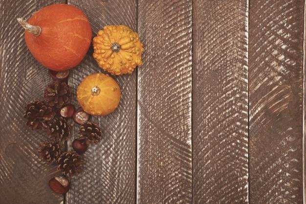 Jesień To Bardzo Kolorowy Sezon Darmowe Zdjęcia