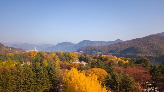 Jesień W Korei Południowej Premium Zdjęcia