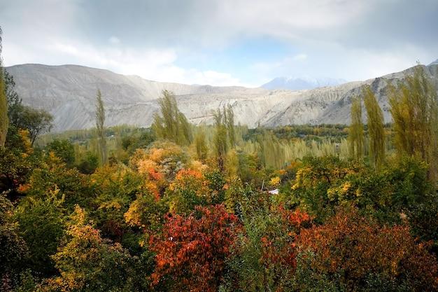 Jesieni Scena W Khaplu, Gilgit Baltistan, Pakistan. Premium Zdjęcia