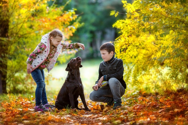 Jesienią dzieci bawią się z psem w jesiennym parku Premium Zdjęcia