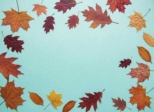 Jesienna kompozycja z liśćmi Premium Zdjęcia