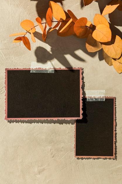 Jesienna Koncepcja Moodboard Z Miejsca Na Kopię Darmowe Zdjęcia