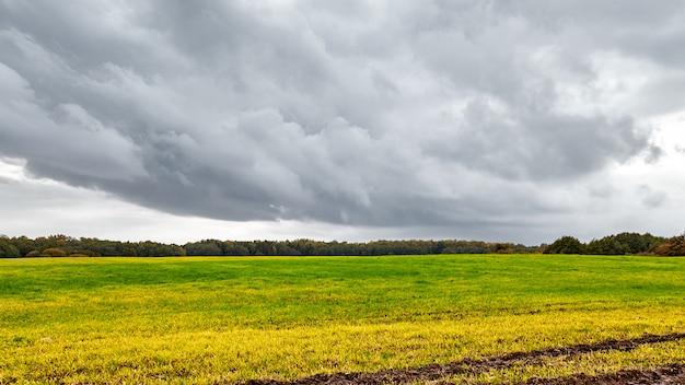 Jesienne Pole. Droga W Polu Jesienią. Dramatyczne Niebo I Drzewa Pomarańczowe. Premium Zdjęcia