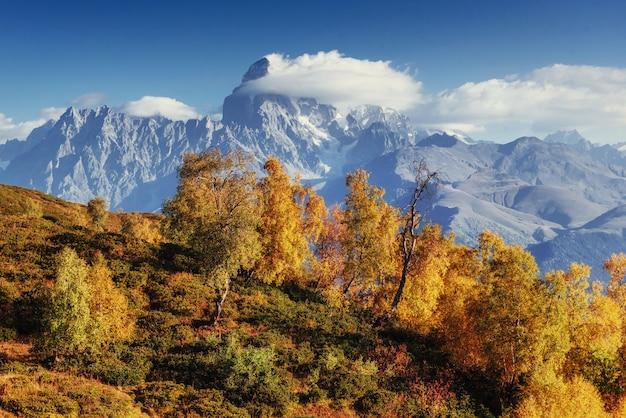 Jesienny Krajobraz I Ośnieżone Szczyty Górskie. Widok Na Mou Premium Zdjęcia