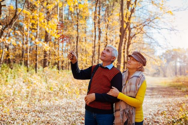 Jesienny spacer. starszej pary odprowadzenie w spadku parku. szczęśliwy mężczyzna i kobieta mówi i relaksuje na zewnątrz Premium Zdjęcia