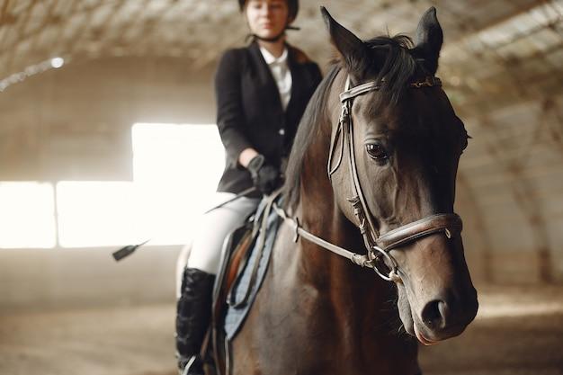 Jeździec Trenuje Z Koniem Darmowe Zdjęcia