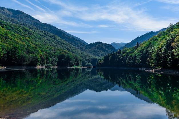 Jezioro Biogradsko W Parku Narodowym Biogradska Gora (czarnogóra, Europa) Premium Zdjęcia