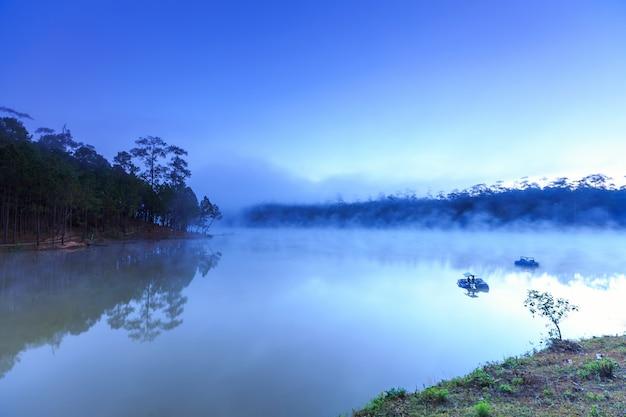 Jezioro i las sosnowy o poranku w Premium Zdjęcia
