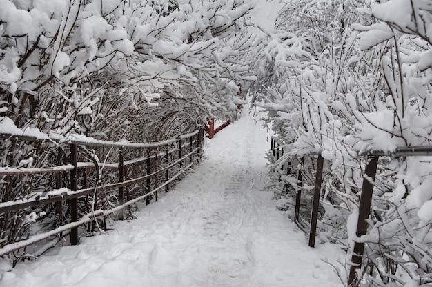 Kamieniste Schody Pod śniegiem Po Burzy śnieżnej Premium Zdjęcia