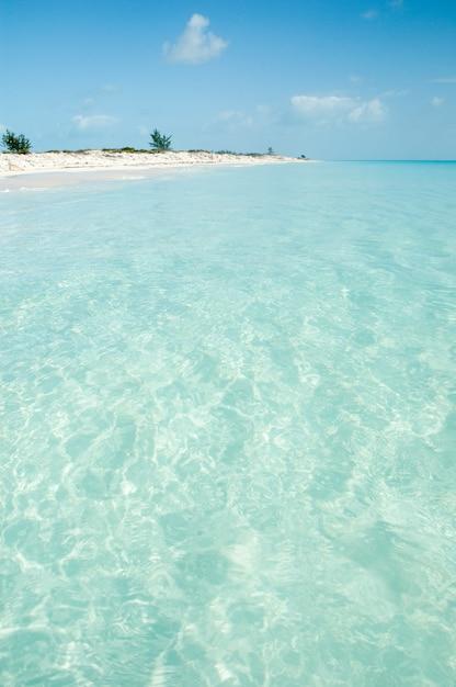 Karaibska plaża z krystalicznie czystą wodą Premium Zdjęcia