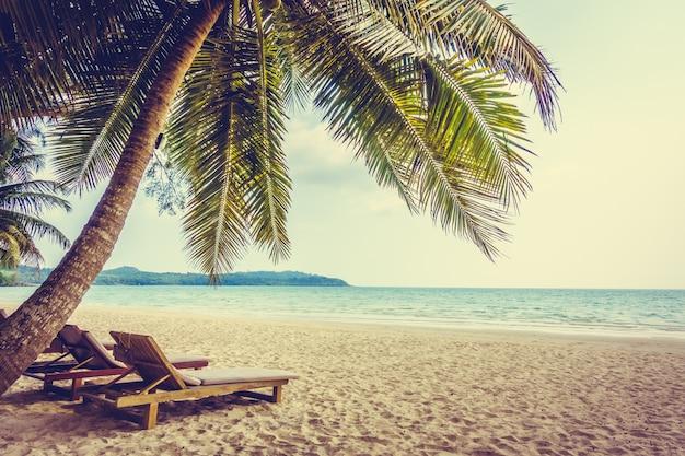 Karaibski kokosowy święto pejzaż morski Darmowe Zdjęcia