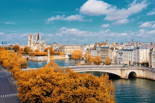 Katedra notre-dame w paryżu jesienią Premium Zdjęcia