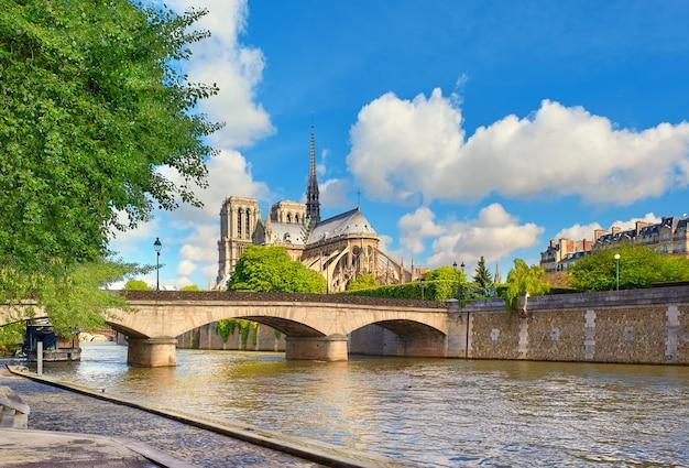 Katedra Notre Dame W Paryżu Wiosną Premium Zdjęcia