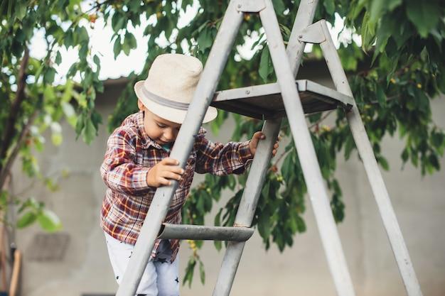 Kaukaski Chłopiec W Kapeluszu Po Schodach Do Jedzenia Wiśni W Ogrodzie, W Pobliżu Drzewa Premium Zdjęcia
