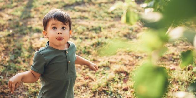 Kaukaski Mały Chłopiec Patrzy W Górę Na Drzewo, Szukając Owocu Podczas Zabawy Na Polu W Ciągu Dnia Dziecka Premium Zdjęcia