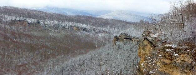 Kaukaz, panorama zimowego lasu na wzgórzach Premium Zdjęcia