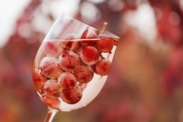 Kieliszek Do Wina Z Winem I Kiścią Winogron W środku, Na Tle Czerwonych Winnic Premium Zdjęcia