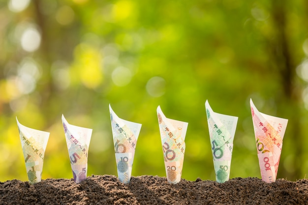 Kilka Chińskich Banknotów (1-100 Juanów) Rosnących W Ziemi Z Zielonym Charakter Rozmycie Tła. Koncepcja Dorastania Biznesu Premium Zdjęcia