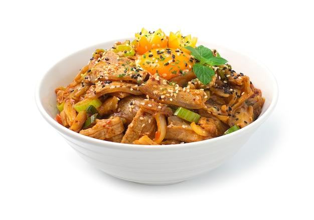 Kimchi Zamieszać Smażone Z Wieprzowiną Na Ryżu Koreańskie Jedzenie Premium Zdjęcia