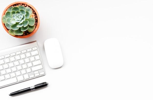 Klawiatura, Mysz Komputerowa I Soczysty Na Białym Biurku Premium Zdjęcia