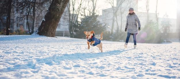 Kobieta bawić się z psem w śniegu Premium Zdjęcia