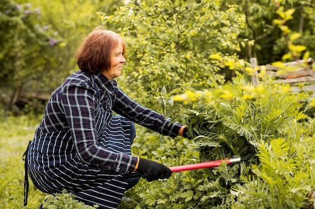 Kobieta Przycinanie Krzewu Darmowe Zdjęcia