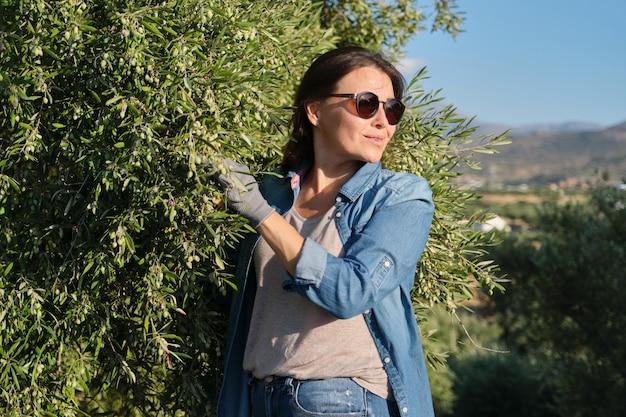 Kobieta W Gaju Oliwnym, Niedojrzałe Uprawy Oliwek Premium Zdjęcia