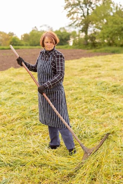 Kobieta Zbierania Trawy Darmowe Zdjęcia
