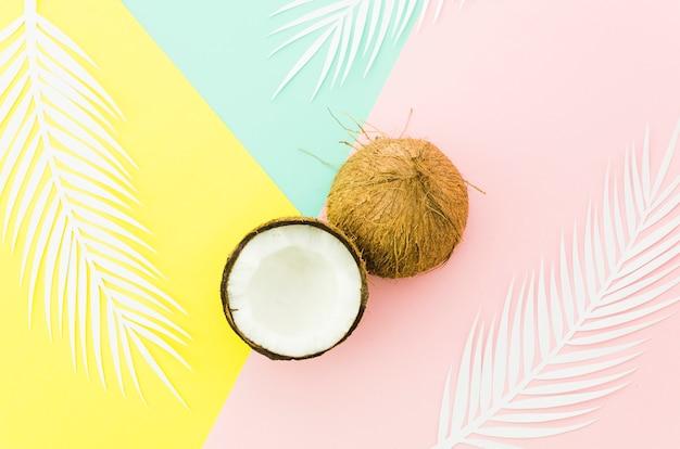 Kokosy z liśćmi palmowymi na jasnym stole Darmowe Zdjęcia