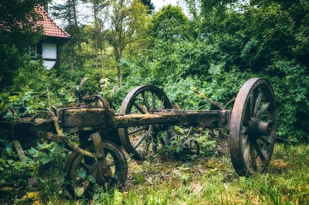 Koła Starego Wózka Cielca Otoczony Drzewami Darmowe Zdjęcia