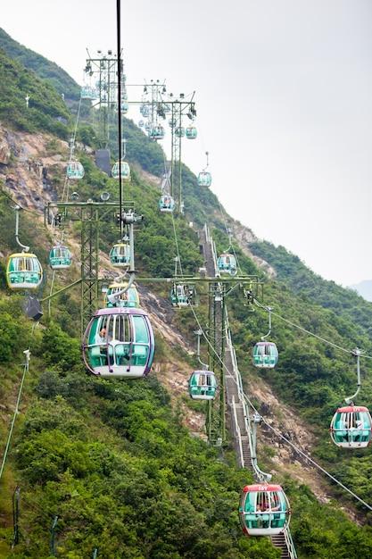 Kolejki Linowe Nad Tropikalnymi Drzewami W Hongkongu 1 Października 2012 R Premium Zdjęcia