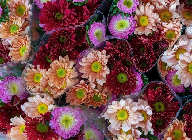 Kolorowe Kwiaty Do Sprzedaży W Ciągu Dnia Darmowe Zdjęcia