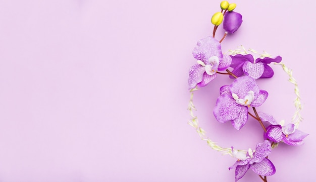 Kolorowy Międzynarodowy Dzień Kobiet Darmowe Zdjęcia
