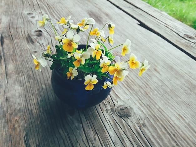 Kompozycja kwiatowa w ogrodzie Premium Zdjęcia