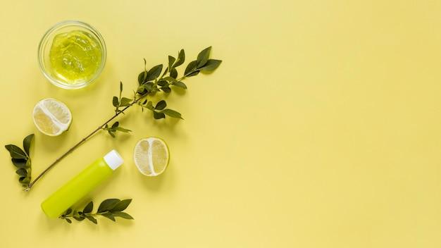 Koncepcja Kosmetyki Naturalne Z Miejsca Kopiowania Darmowe Zdjęcia