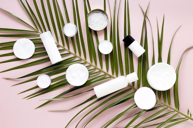 Koncepcja Kosmetyków Naturalnych Darmowe Zdjęcia