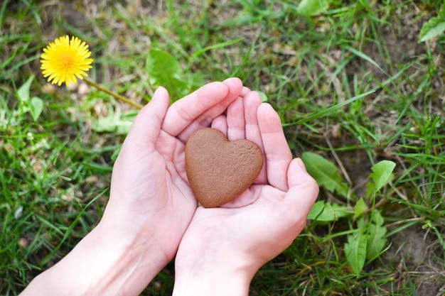 Koncepcja Miłości I Walentynki. Męska Ręka W Kształcie Serca Na Tle Pola Zielonej Trawie Premium Zdjęcia