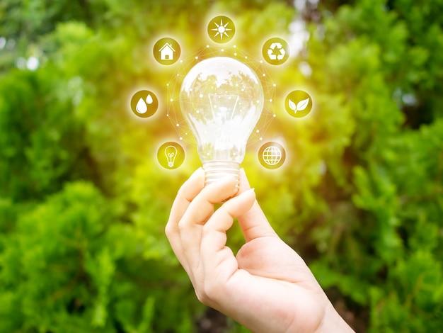 Koncepcja oszczędzania efektywności energetycznej. ręki mienia żarówka z eco ikonami Premium Zdjęcia